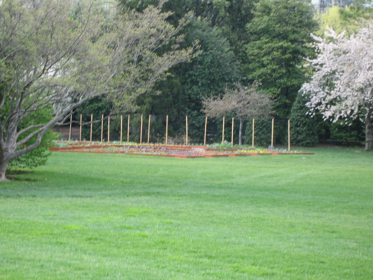My California Garden In Zone 23 What 39 S In The White House Vegetable Garden