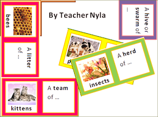 Why teach collective nouns
