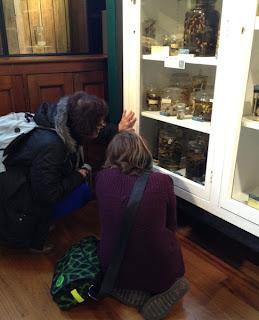 Grant Museum of Zoology Field Trip London - Arts Award Bronze Level Art Portfolio