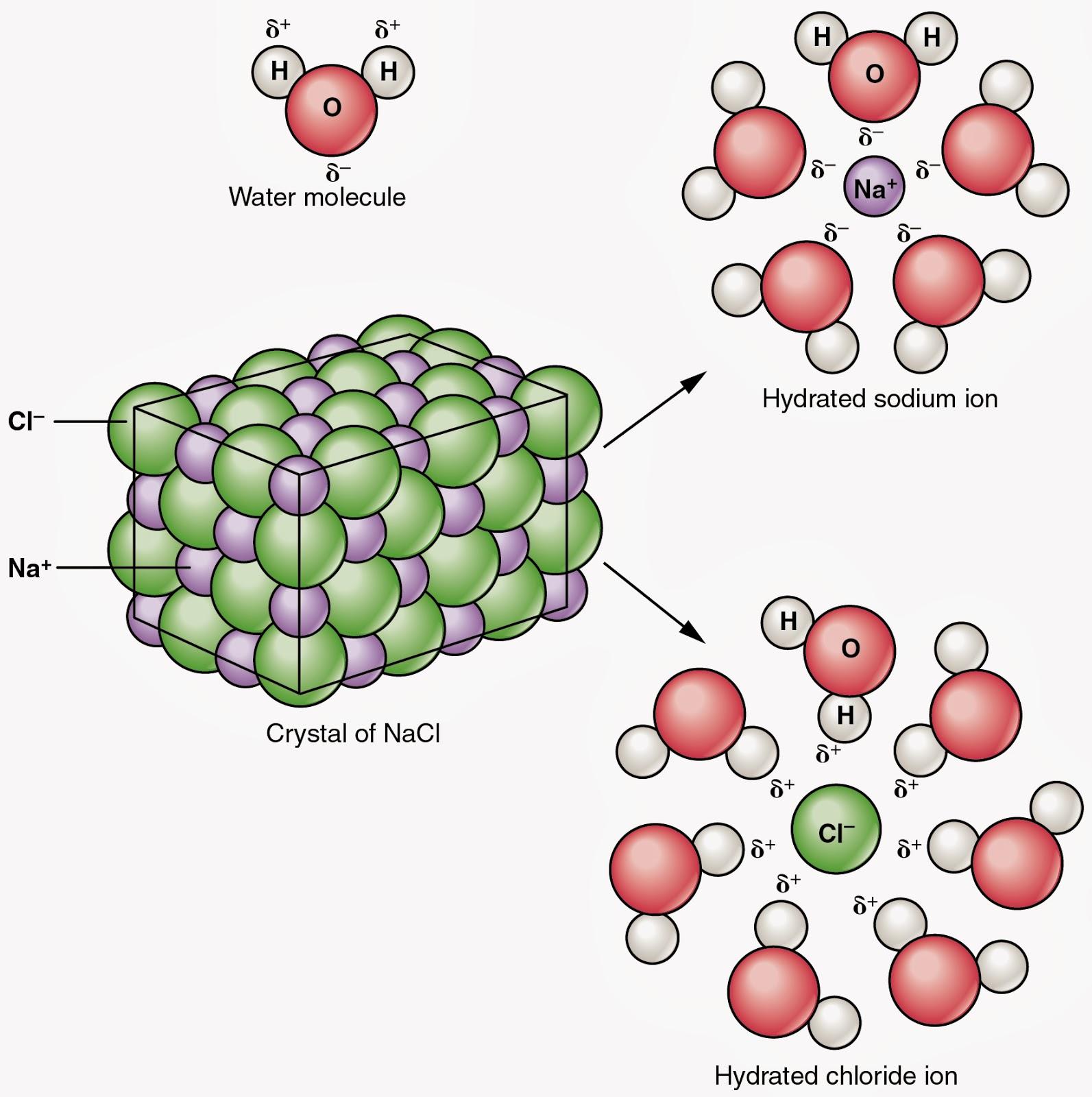 Salt Water Molecule Structure 52886 Trendnet Diagram Of Download