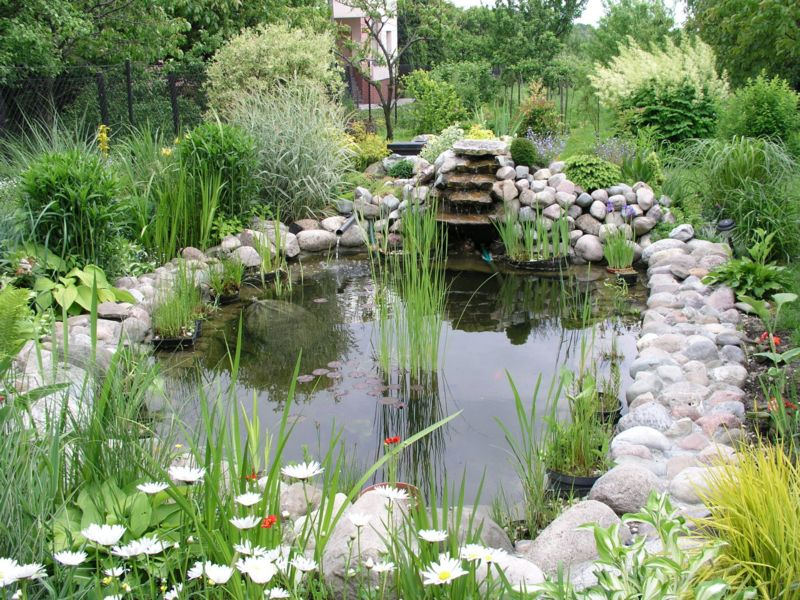 Designs Garden Ponds Pictures : Beautiful and latest home garden ponds designs images pictures