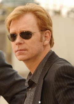 David Caruso (CSI:MIAMI)