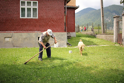 Vacation in Romania