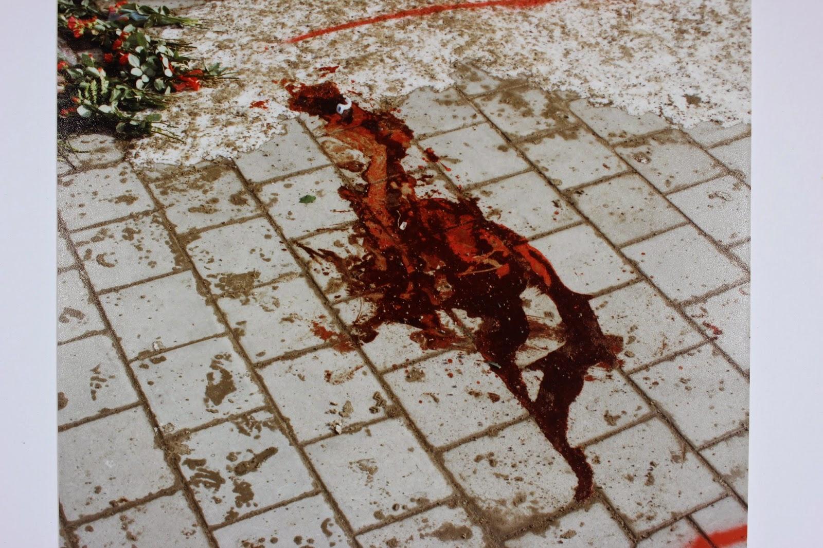 Blodpölen Palmemordet 1