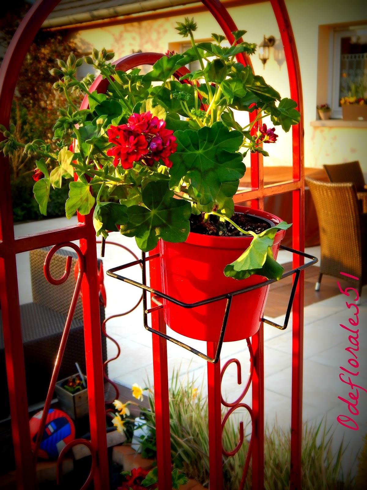 Beaut s florales la d co du jardin en rouge for Deco du jardin