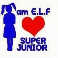 elf, kanvas, super junior, fan girl, fanboys