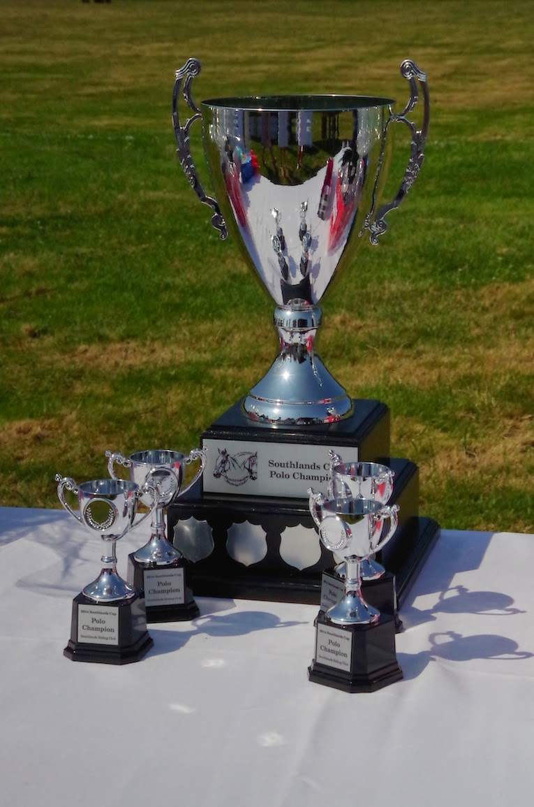 Trophy for The Southlands Cup: Beyond the Blue Umbrella