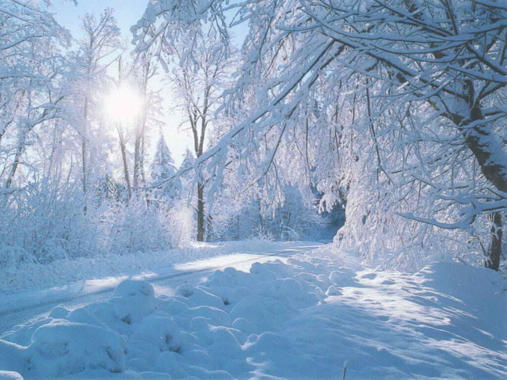 snowy nature wallpaper - photo #30