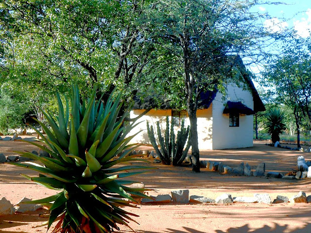 Kamanjab Rest Camp Namibia