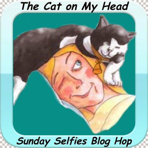 http://thecatonmyhead.com/fionas-fabulicious-sunday-selfies/