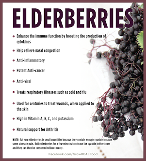 Homemade Organic All Natural Elderberry