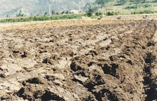 La contaminación de los suelos agricolas