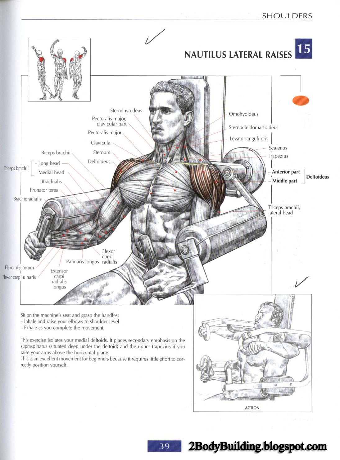 how to develop wings muscle at home