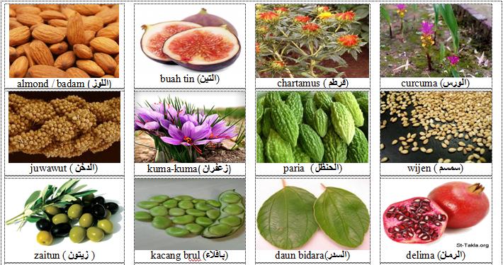 almond/badam, buah tin, chartamus, curcuma, juwawut, kuma-kuma, paria, wijen, zaitun, kacang brul, daun bidara