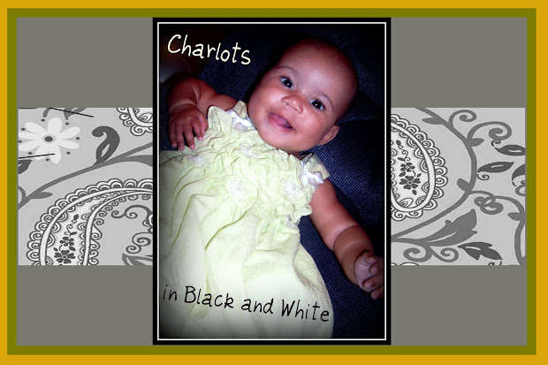 Charlots in Black and White