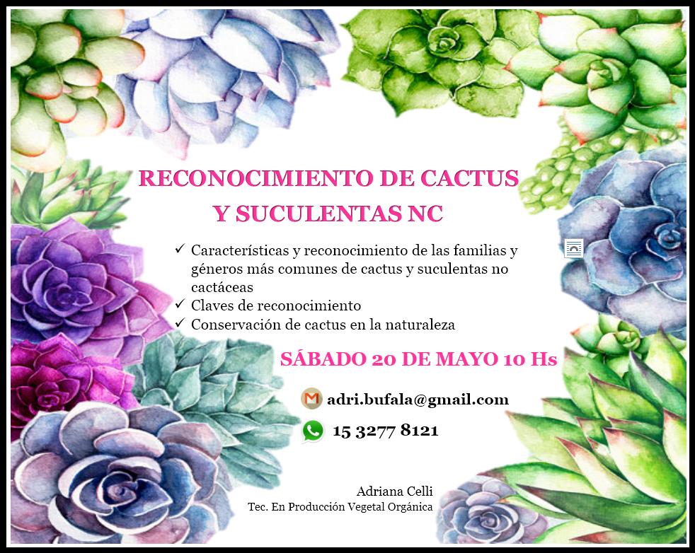 RECONOCIMIENTO DE CACTUS Y SUCULENTAS NC SÁBADO 20 DE MAYO 10 HS CLIC EN LA FOTO PARA MÁS INFO