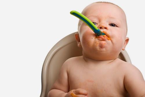 Makanan Solid Untuk Bayi, makanan bayi