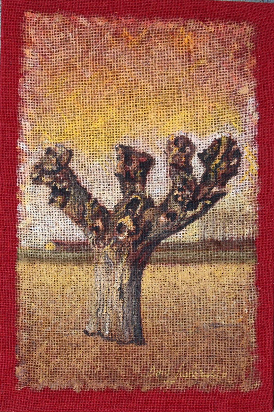 Gelso al cascinotto Tonelli (pummi) N.40