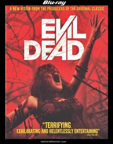 Kötü Ruh: Evil Dead (2013) afis