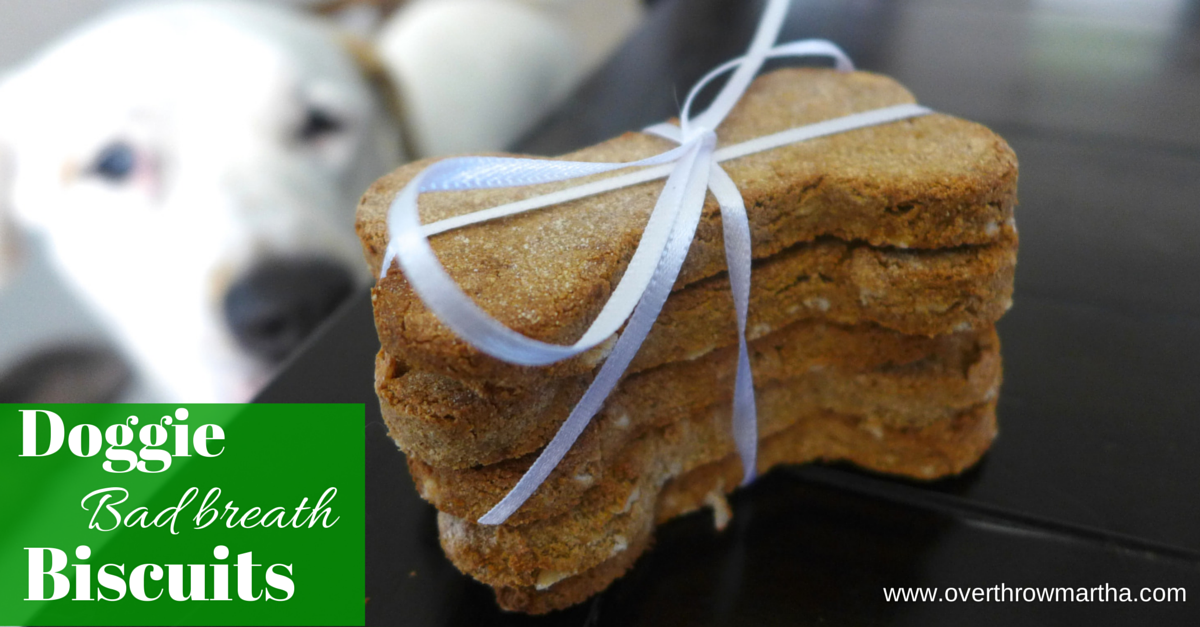 Bad Breath busting biscuits for dogs using peppermint essential oil