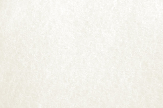 Background Paper White1