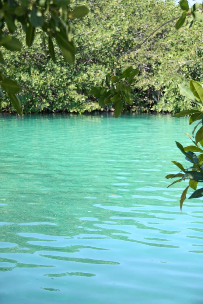 Tulum july