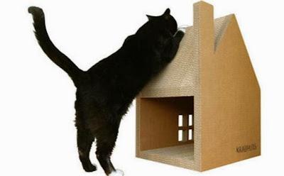 Kucing Mencakar Karbhuis