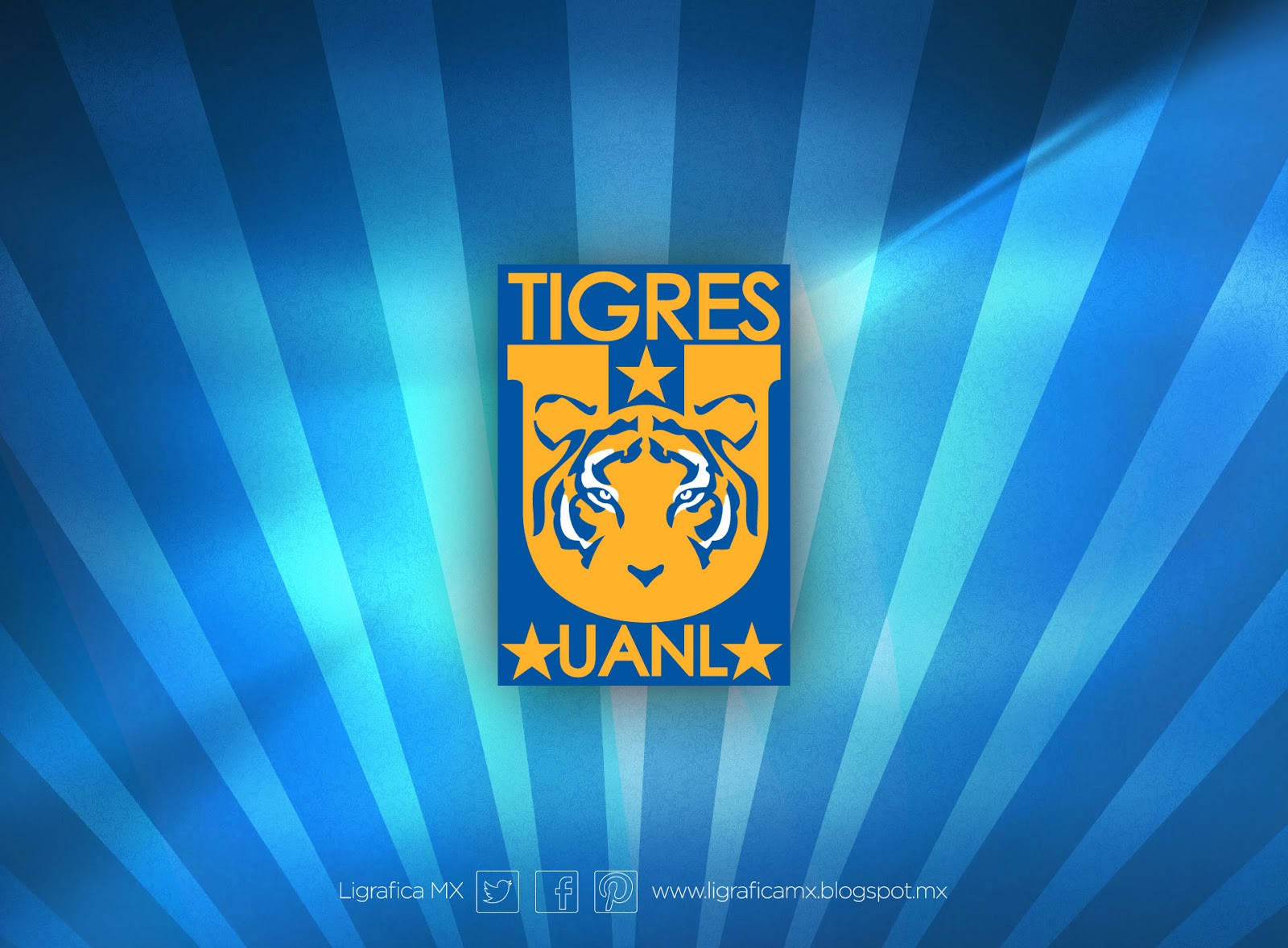 ligraficamx 240114 3 tigres.