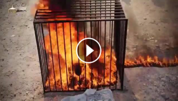 """Islamic State video showing Jordanian pilot, Moath al-Ksasbah, burned alive titled with Qur'an quote: """"Healing the Believers Chests"""" [ Video - Pics ]"""
