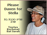 Please Daven for Stella