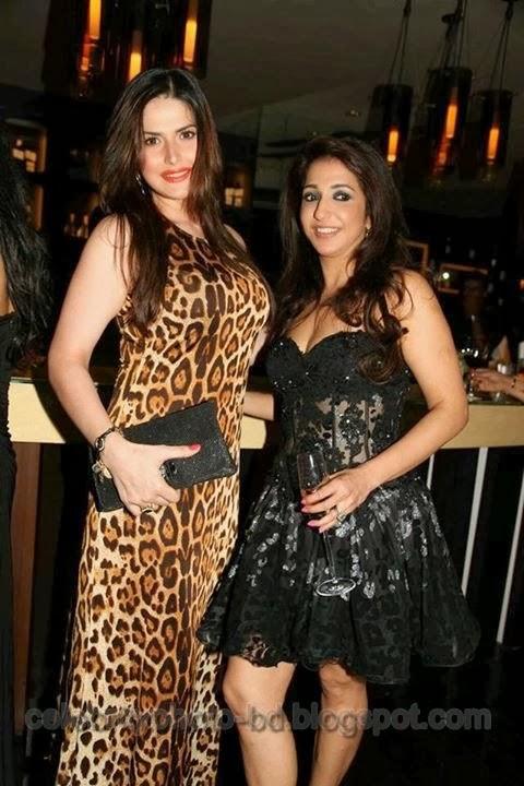 Actress+Zarine+Khan+Latest+Photos025