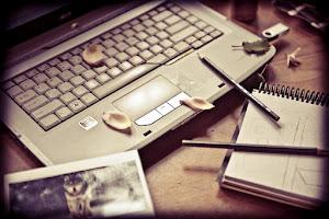 Visite o blog da autora