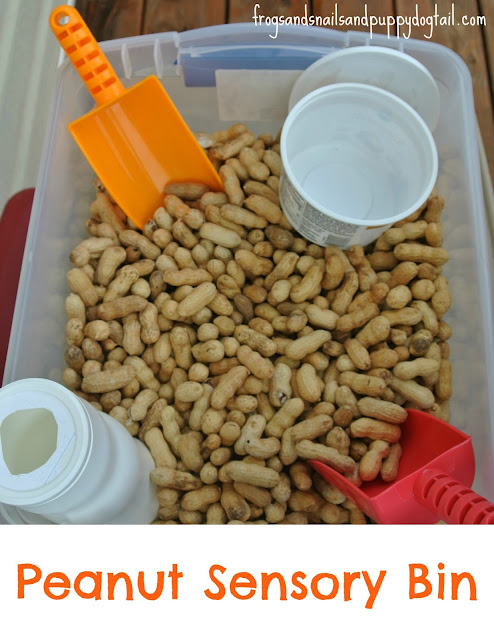 Peanut Sensory Bin