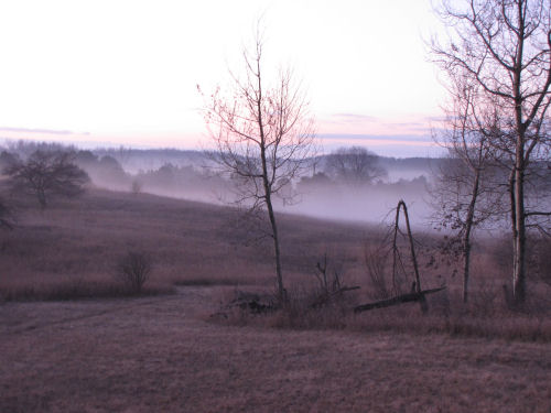 fog in low hills