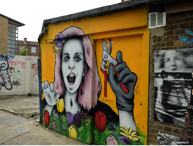 Graffiti street art  Zabou femme qui jardine woman gardening, Hackney Farm à Londres