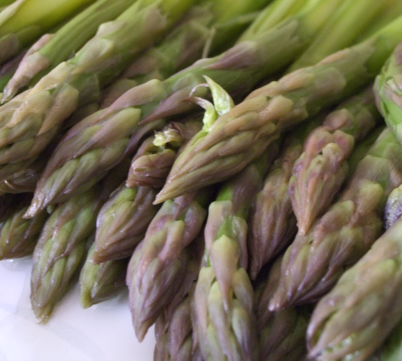 Asparagus with Creamy Egg Salad - Asparagi con Crema di Uova