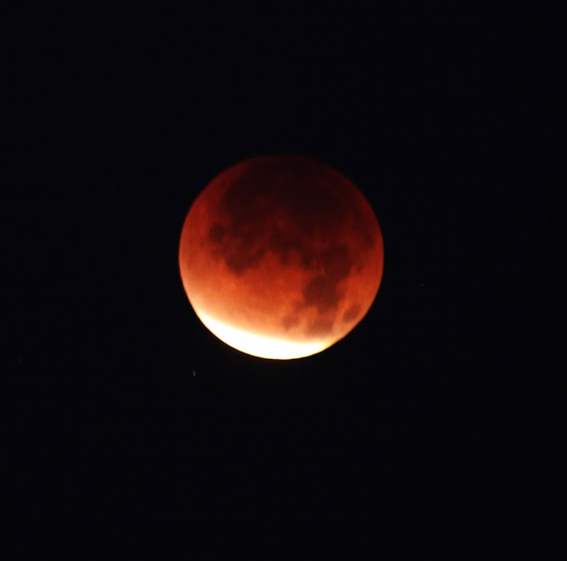 BARE RECORD OF TRUTH: 215: FOUR BLOOD MOONS and the MAN IN ...