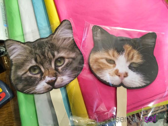 komik-kedi-yelpaze-renk