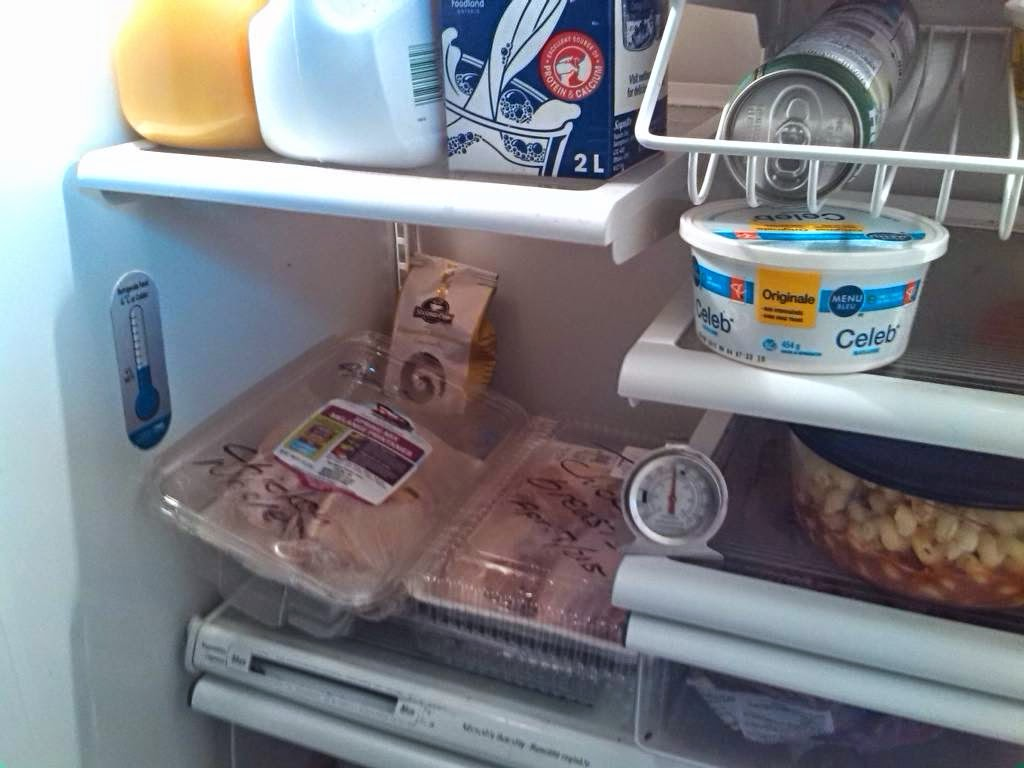 Health inspector 39 s notebook home food safety how Can you put hot food in the refrigerator