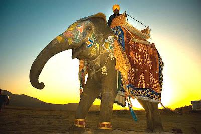 Rajashthan Tourism Stills