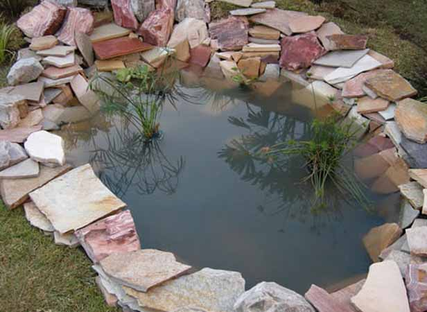 Above ground garden ideas inspiration interior designs for Fish for small outdoor pond