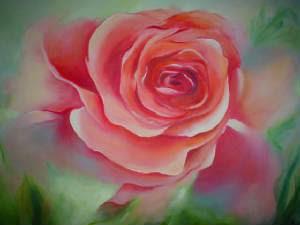 flores-rojas