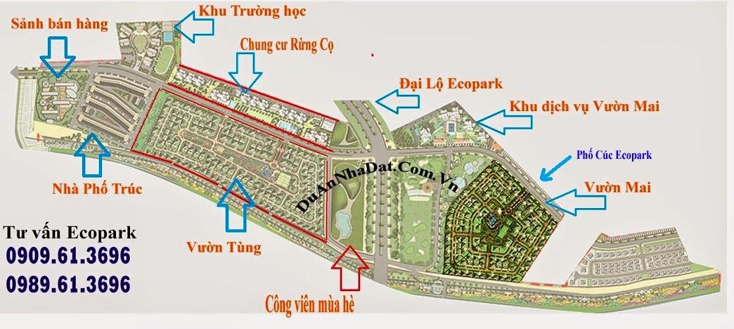 vị trí khu liền kề phố Cúc Ecopark