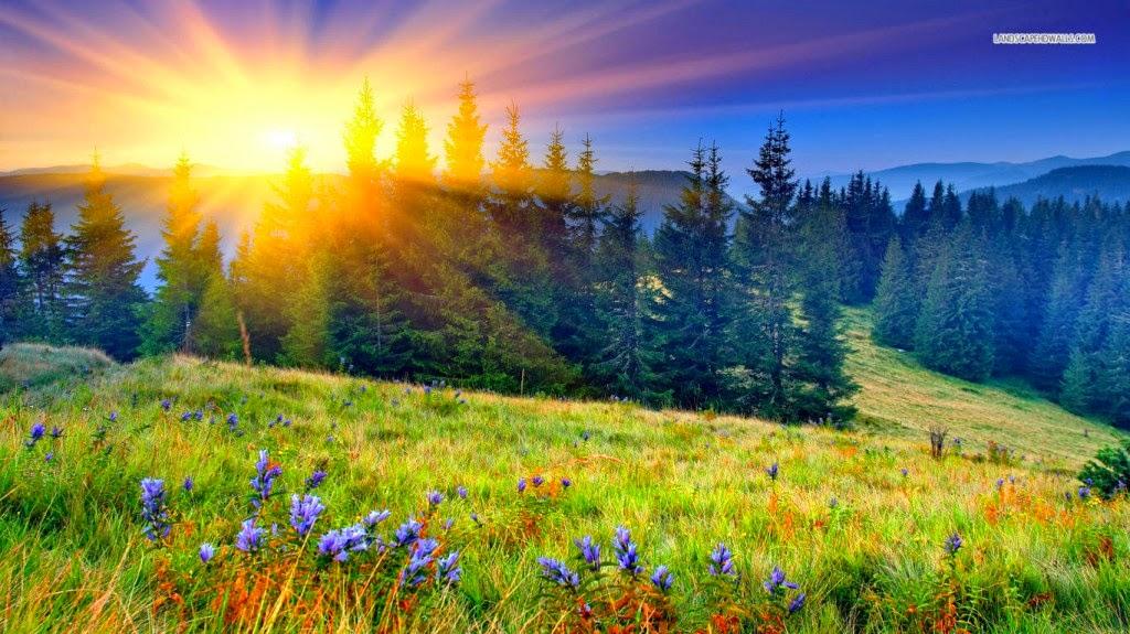 hình nền mùa xuân cực đẹp