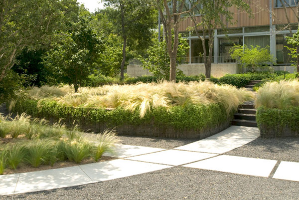 Twenty nine modern ten eyck landscape architects for Modern grasses landscaping