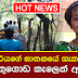 Kotadeniyawa murder suspect caught in Baduwathugoda jungle