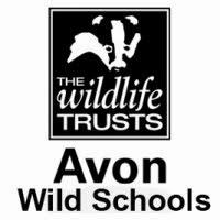 AWT Wild Schools blog