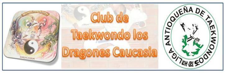 Club de Taekwondo los Dragones Caucasia