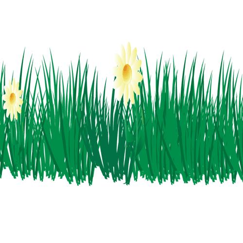 Hierba con flores
