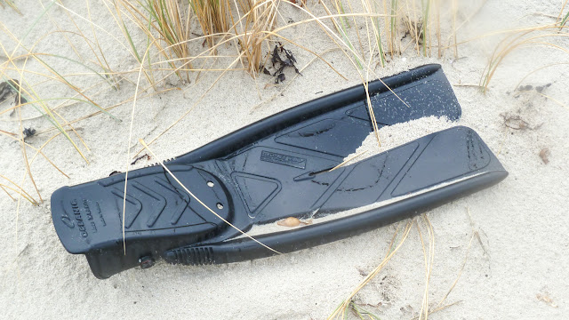 scuba diving flipper washed up on beach